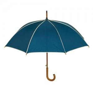 blå stok paraply